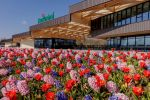 Amsterdam: Half-Day Flower Fields and Keukenhof Bicycle Tour