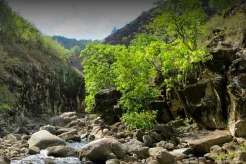 Kauai: Private Customizable Hike and Tour