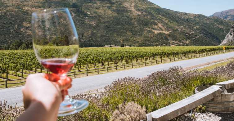 Queenstown: Small Group Wine Sampler Tour