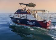 Von Lazise: Kreuzfahrt am Gardasee an der Südküste nach Sirmione