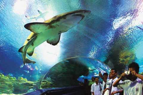 Kuala Lumpur: Aquaria KLCC Entrance Ticket