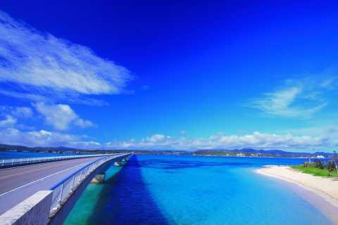 Okinawa: Bus Tour to Churaumi Aquarium with Sightseeing