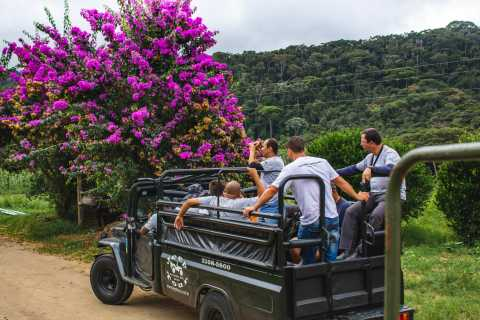 From Rio: Brejal Countryside Farm and Nature Day Trip