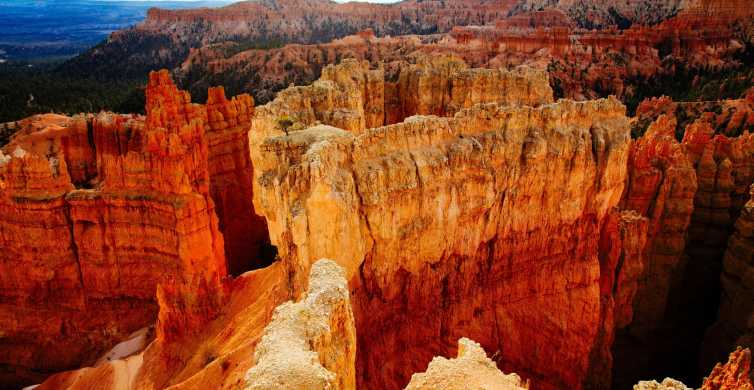 Las Vegas to Bryce and Zion National Park Tour with Lunch
