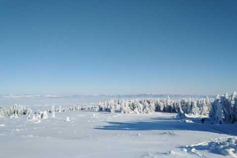 One-Day Wandelen met sneeuwschoenen op Vitosha