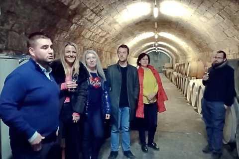 Budapest: Budafok Wine Tour avec dégustations