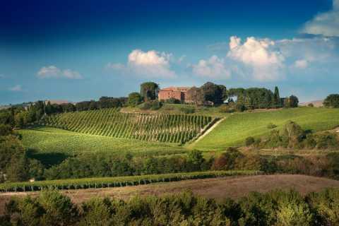 Montalcino: degustazione di vino Brunello con snack locali