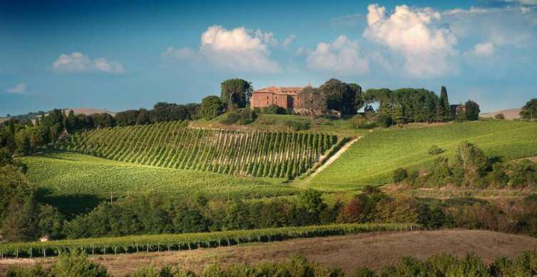 Montalcino: Brunello Weinprobe mit lokalen Snacks