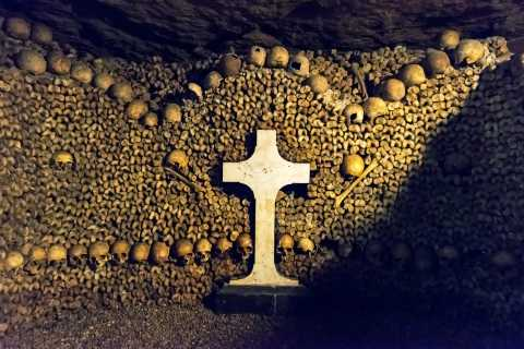 Paris: Catacombs Virtual Tour with French History Expert