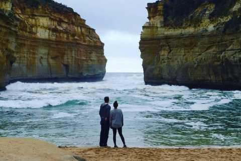 Melbourne: Great Ocean Road, Puffing Billy & Penguins Bundle