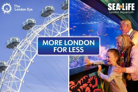 Londres: SEA LIFE y London Eye Combo Ticket