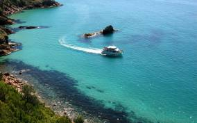 Phillip Island: 1-Hour Cape Woolamai Nature Cruise