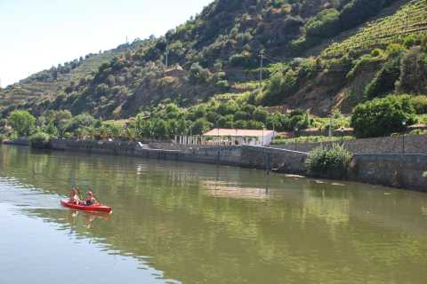 Pinhão: Douro Valley Rabelo Boat Tour and Kayak Experience