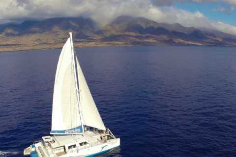 Maui: Dolphin Sailing Adventure with Lunch and Drinks
