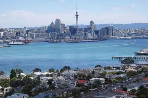 Auckland: excursão turística panorâmica de meio dia