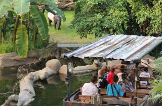 Leipzig: 1-tägiger Hop-On-Hop-Off-Bus und Leipziger Zoo-Ticket