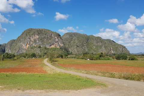 Cuba: Viñales Full-Day Tour with Transfer Options