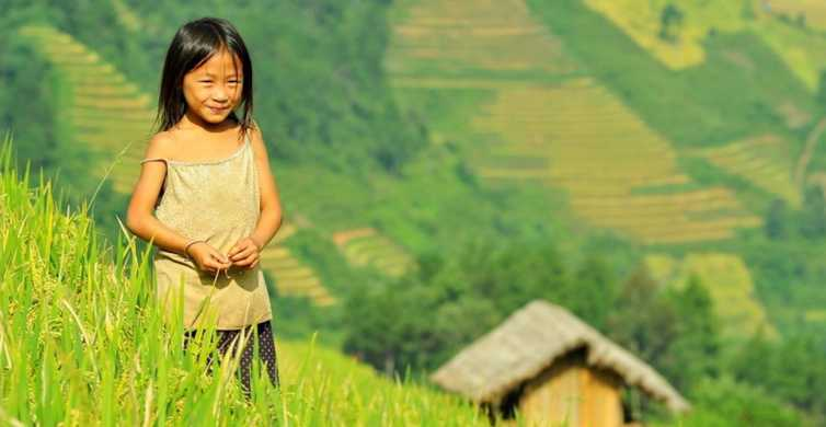 From Hanoi: Private Tour to Mu Cang Chai Rice Field