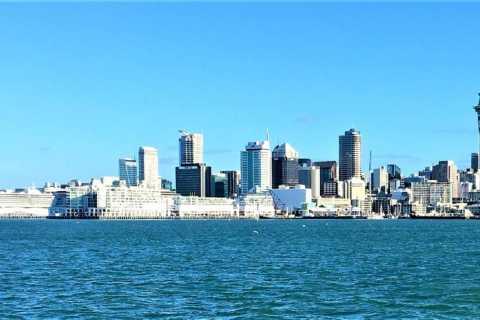 Auckland: excursão a pé guiada de meio dia