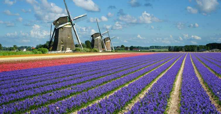Holanda Meridional: boleto de transporte público ilimitado de 1 día