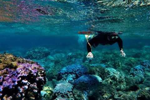 Остров Пасхи: Поездка с маской и трубкой на северное побережье
