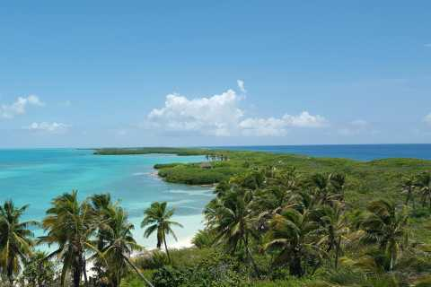 From Riviera Maya: Isla Contoy & Isla Mujeres Full-Day Tour