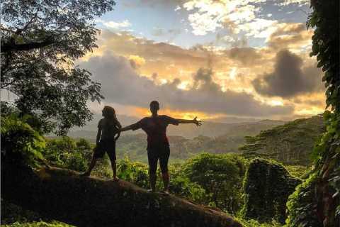 Kauai: Private Jungle and Rainbow Eucalyptus Hike
