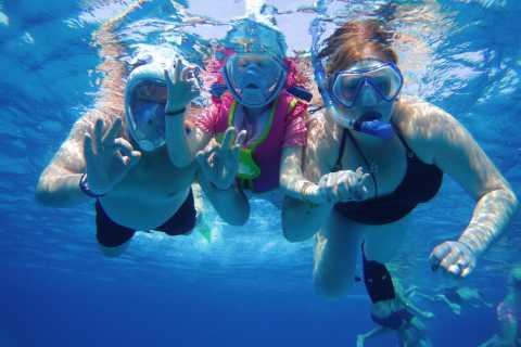 Vanuit Marsa Alam: Sataya Reef en dolfijnen hele dag boottocht