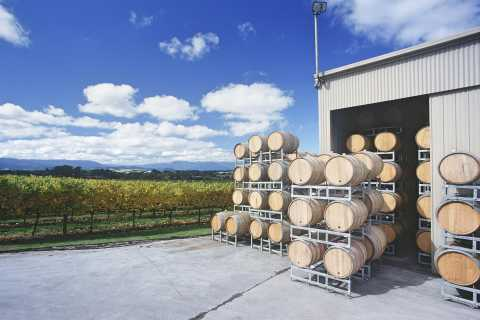 Yarra Valley and Dandneong Ranges: Scenic Bus Tour and Lunch