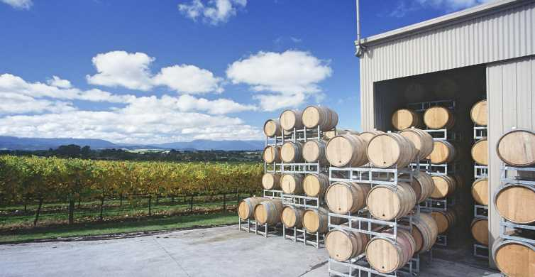 Yarra Valley: Bus Wine Tour with Lunch and a Glass of Wine