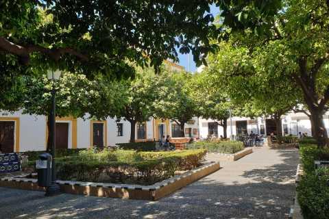 Siviglia: tour a piedi dell'Opera, della storia ebraica e di Santa Cruz