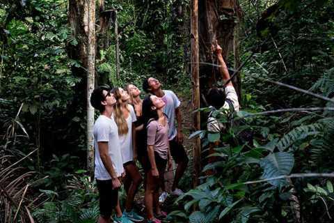 From Ubud: 3-Hour Tropical Trek and Taro Village Tour