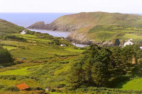 Cork: Cape Clear Island Tour