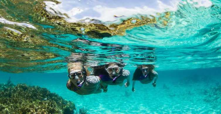 Mooloolaba: Mudjimba Island Snorkeling Cruise