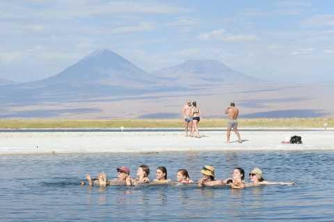 Atacama: Cejar Lagoon, Ojos del Salar & Tebinquiche Lagoon