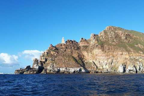 Simon's Town: Boat Tour to Cape Point