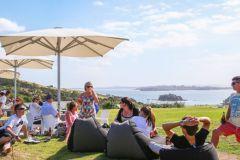 De Auckland: excursão pelas vinícolas da Ilha Waiheke