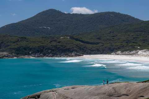Great Ocean Road: Phillip Island & Wilsons Promontory Tour