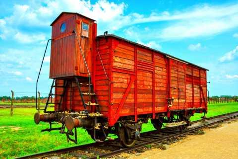 Krakow: Wieliczka Salt Mine og Auschwitz-Birkenau Tour