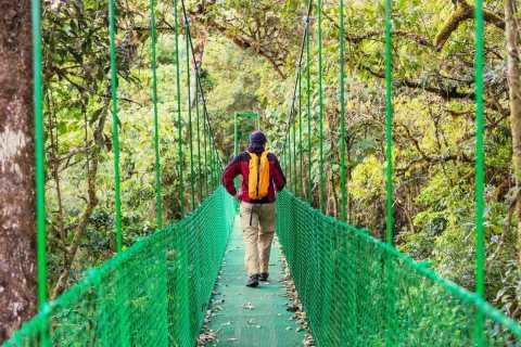 Puntarenas: Half-Day Highlights Tour w. Rainforest Skyway