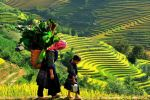 From Hanoi: 2-Day 1-Night Sapa Tour by Overnight Train
