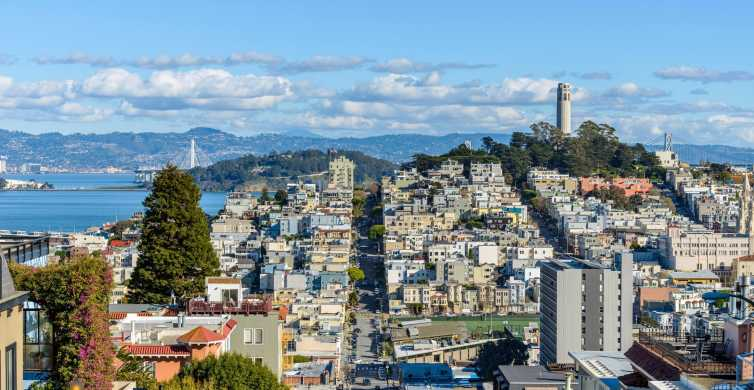 San Francisco: Private Morning or Afternoon City Tour