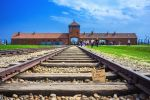 Krakow: Guided Auschwitz Birkenau Tour