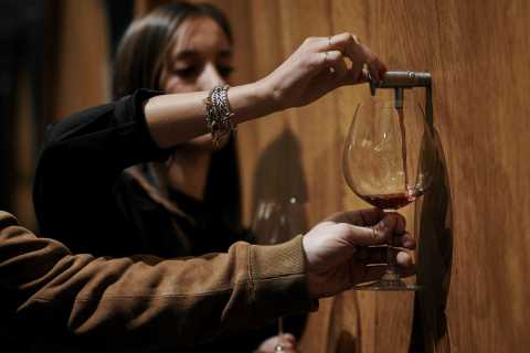 Langhe: Barolo Winery Tour and Wine Tasting