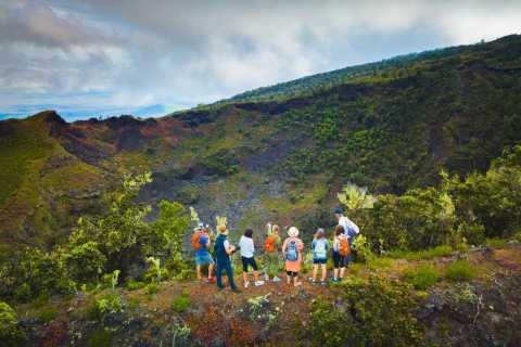 Big Island: Private Hidden Craters Hiking Tour