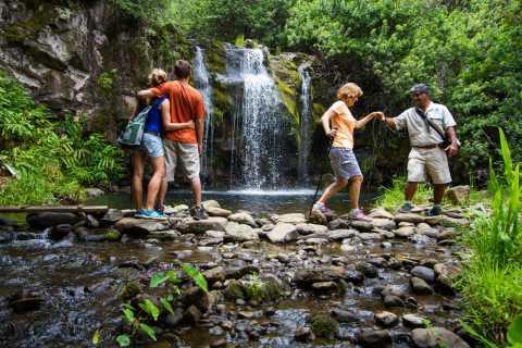 Big Island: Kohala Waterfalls Private Off-Road Tour & Hike
