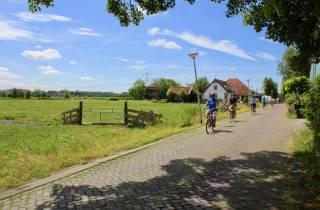 Amsterdam: Fahrradtour im Waterland und zu Fischerdörfern