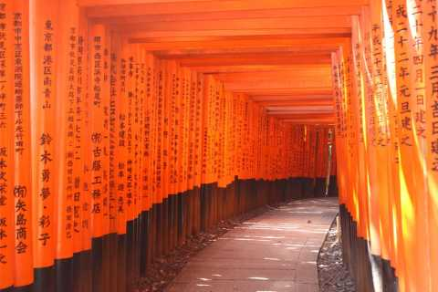 From Osaka : Private Full-day Tour to Kyoto