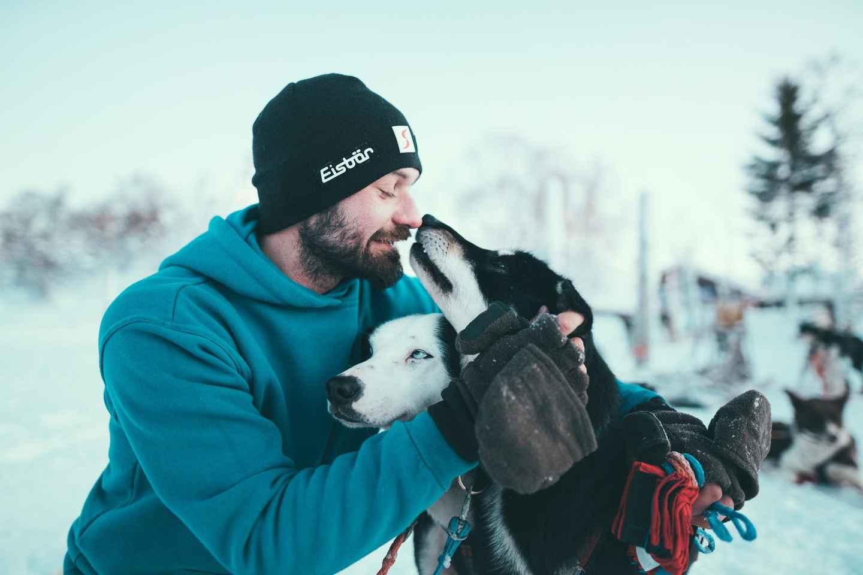 Tromsø: abenteuerliche selbstgesteuerte Husky-Schlittenfahrt