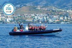 Excursão de Observação de Golfinhos e Baleias - 2 Horas